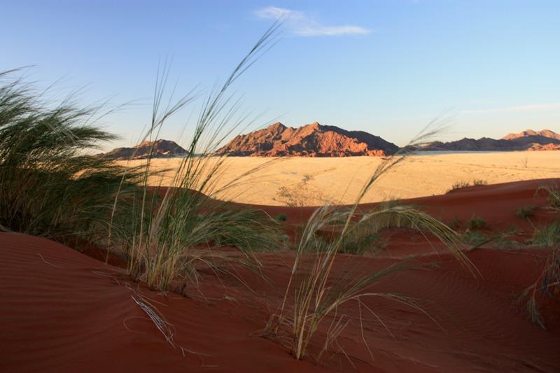 21/05/11 - Désert du Namib